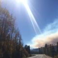 Slash Burning in BC — More Figures